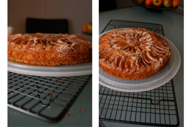 Cinnamon Apple Cake 03